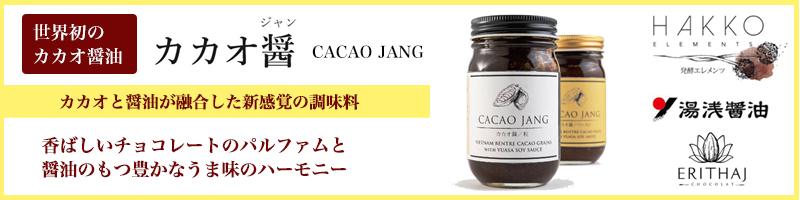 カカオと醤油が融合した 世界初の新感覚調味料 CACAO JANG